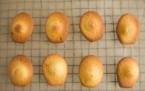 法式玛德琳蛋糕怎样做,玛德琳蛋糕的制作教程,玛德琳蛋糕的做法丨蛋糕培训